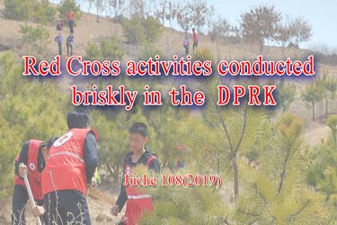 Red Cross activities are conducted briskly in the DPRK