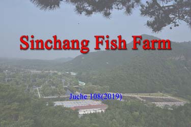 Sinchang Fish Farm