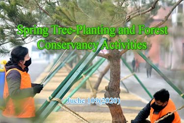 Spring Tree-Planting and Forest Conservancy Activities